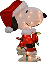 ProductWorks 24-Inch Pre-Lit Peanuts Snoopy with Strand Christmas Holiday Yard Art Decoration, 24-Inch, 35 Lights