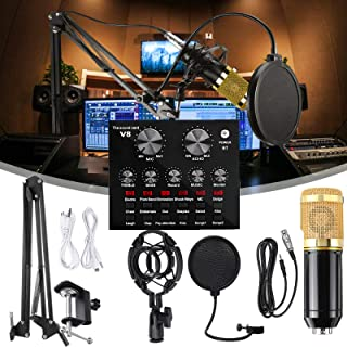 Portable Karaoke Microphone Live Sound Card Microphone Set Voice Changer Multifunctional USB Audio Interface Intelligent V...