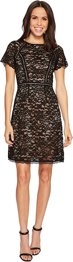 Adrianna Papell - Aubrey Lace Short Sleeve Soft Fit and Flare Dress Spliced with Trim Inserts