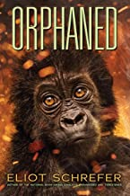 Orphaned (4) (Ape Quartet)