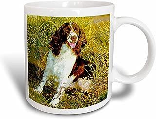 3dRose English Springer Spaniel Mug, 11-Ounce