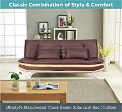 Wondrous Amazon In Sofa Cum Bed Sofas Couches Living Room Download Free Architecture Designs Scobabritishbridgeorg