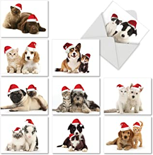 Christmas Copy Cats - Adorable Blank Xmas Note Cards with Envelopes (4 x 5.12 Inch) - Assorted Pet Dog and Cat Cards M6596XSB