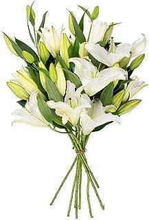 Benchmark Bouquets 8 Stem White Lily Bunch, No Vase (Fresh Cut Flowers)
