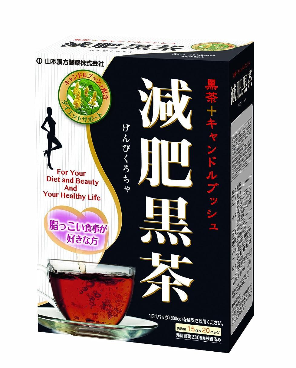 寺院ブロンズ資料山本漢方製薬 減肥黒茶 15gX20H