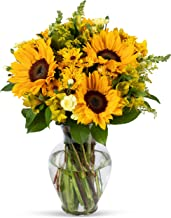 Benchmark Bouquets Rays of Sunshine, With Vase (Fresh Cut Flowers)