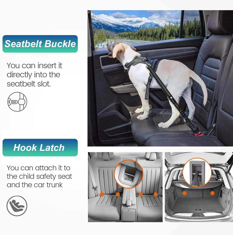 Black /& Purple Bingobang Dog Seat Belt,2 Packs Adjustable Pet Cat Car Harness Safety Leash with Reflective Elastic Nylon Bungee Buffer