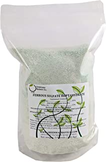 Ferrous Sulfate Powder Heptahydrate 20% Iron (Fe) 12% Sulfur (S) 100% Water Soluble Powder