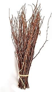 50 Birch Twigs, Birch Branches centerpieces, Decorative Birch, Birch Branches for Crafts