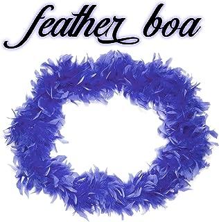 Royal Blue Feather Boa Costume Accessory