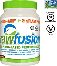 SAN Nutrition RawFusion Plant Protein Powder, Peanut Chocolate Fudge, 32.9 Ounce, Pack of 1