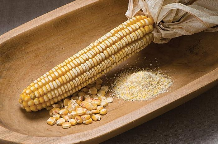 The Best Davids Garden Corn Seeds