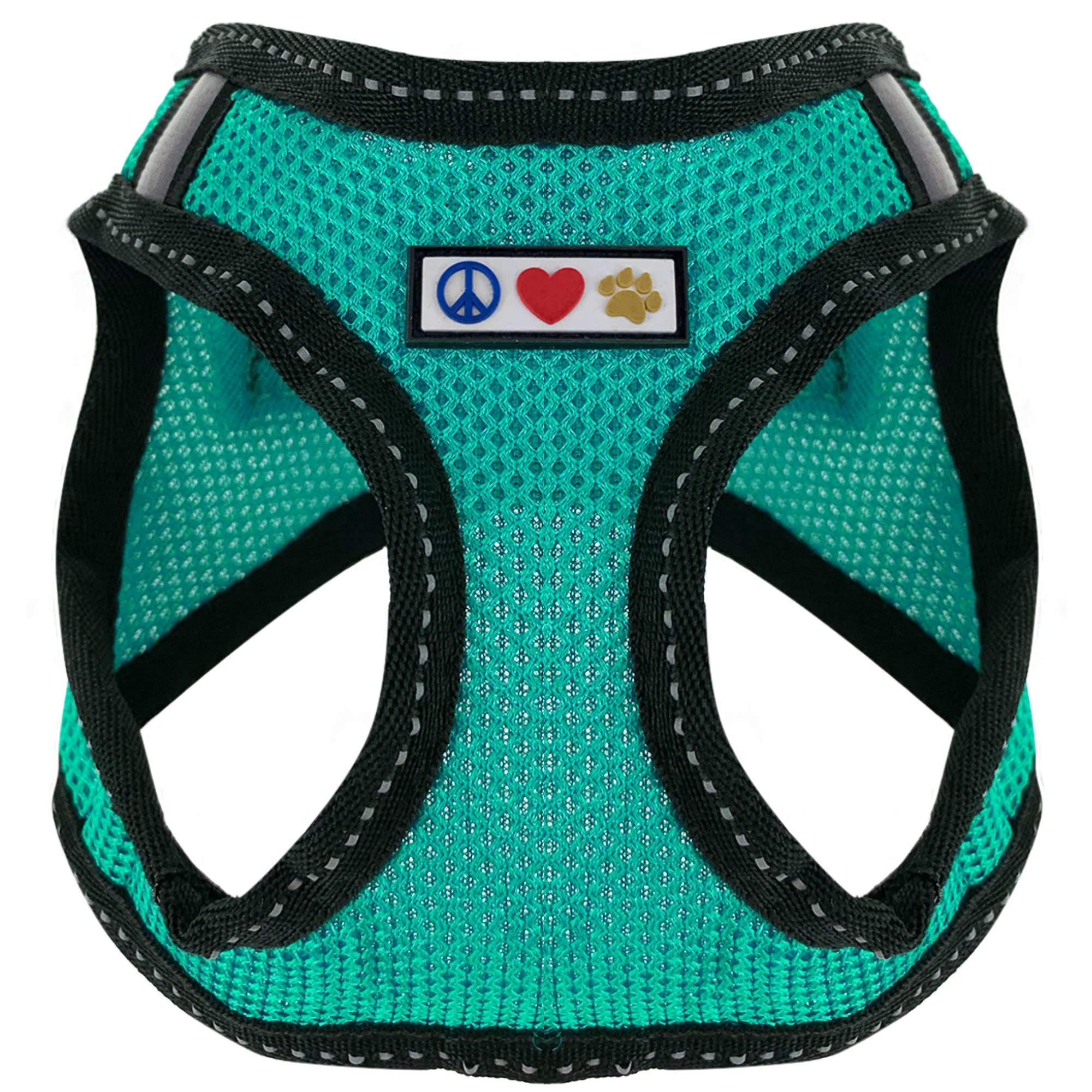 Pawtitas Reflective Harness Training Aquamarine