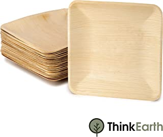ThinkEarth Palm Leaf Compostable Plates | All-Natural Eco Friendly Disposable Dinnerware For Parties, Weddings & Events (25 PACK, 10 inch)