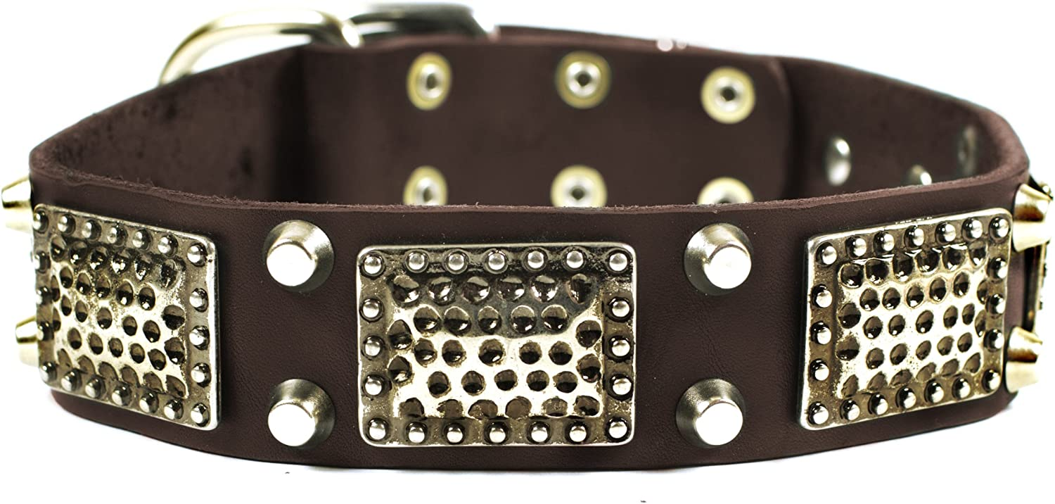Dean and Tyler THOR , Leather Dog Collar with Brass Plates and Nickel Studs  Brown  Size 22Inch by 11 2Inch  Fits Neck 20Inch to 24Inch