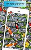 fonds d'écran de poissons vivants HD - thème 3D de l'eau réelle