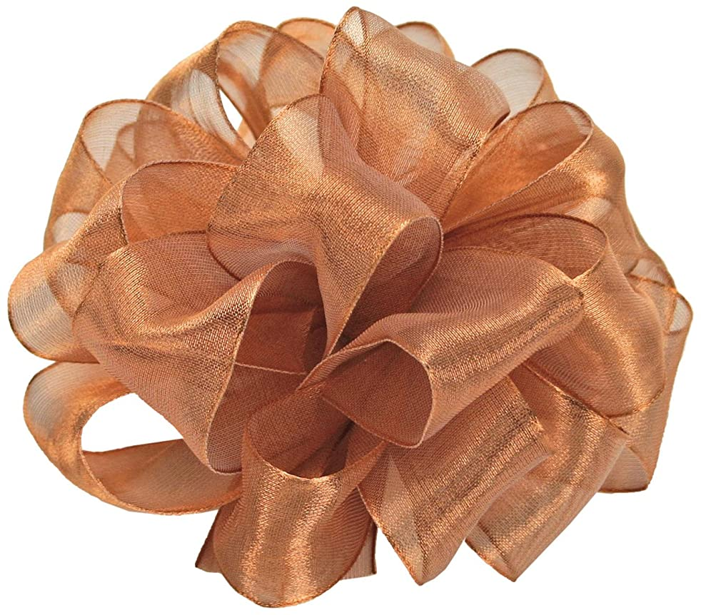 Offray Wired Edge Firefly Metallic Sheer Craft Ribbon, 5/8-Inch Wide by 15-Yard Spool, Copper