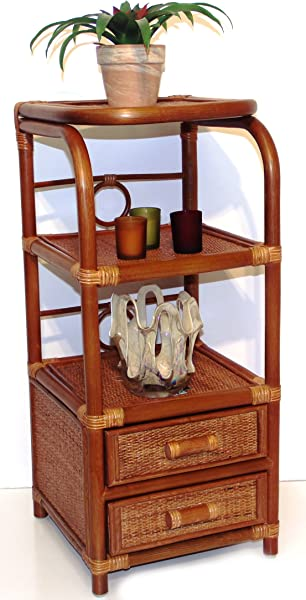 SunBear Furniture Handmade Bookcase Designer ECO Rattan Wicker With 2 Drawers Cognac