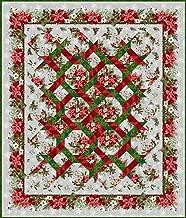 Quilt Kit~The Winter Twist Gray Quilt by Jason Yenter~64 x 75~ Pattern/Fabric~Top/Binding