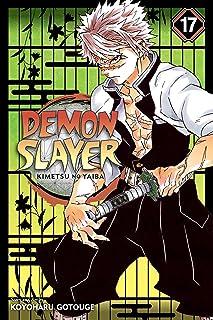 Demon Slayer 17: Kimetsu No Yaiba