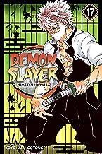 Demon Slayer: Kimetsu no Yaiba, Vol. 17 (Volume 17)