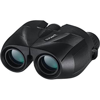 Binoculars, Binoculars for Adults and Kids, 12x25 Compact Binoculars for Bird Watching, Large Eyepiece with Low Light Night Vision Easy Focus Binoculars for Travel, Hunting, Concerts and Sport Games