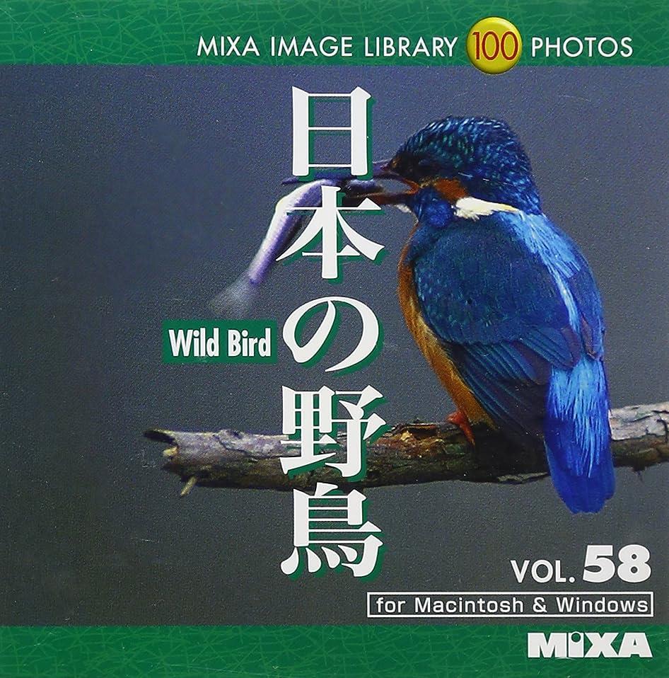 戦う債務魔術師MIXA IMAGE LIBRARY Vol.58 日本の野鳥