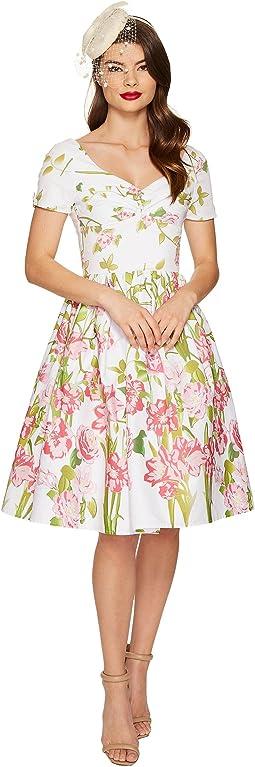 Short Sleeve Whitman Swing Dress