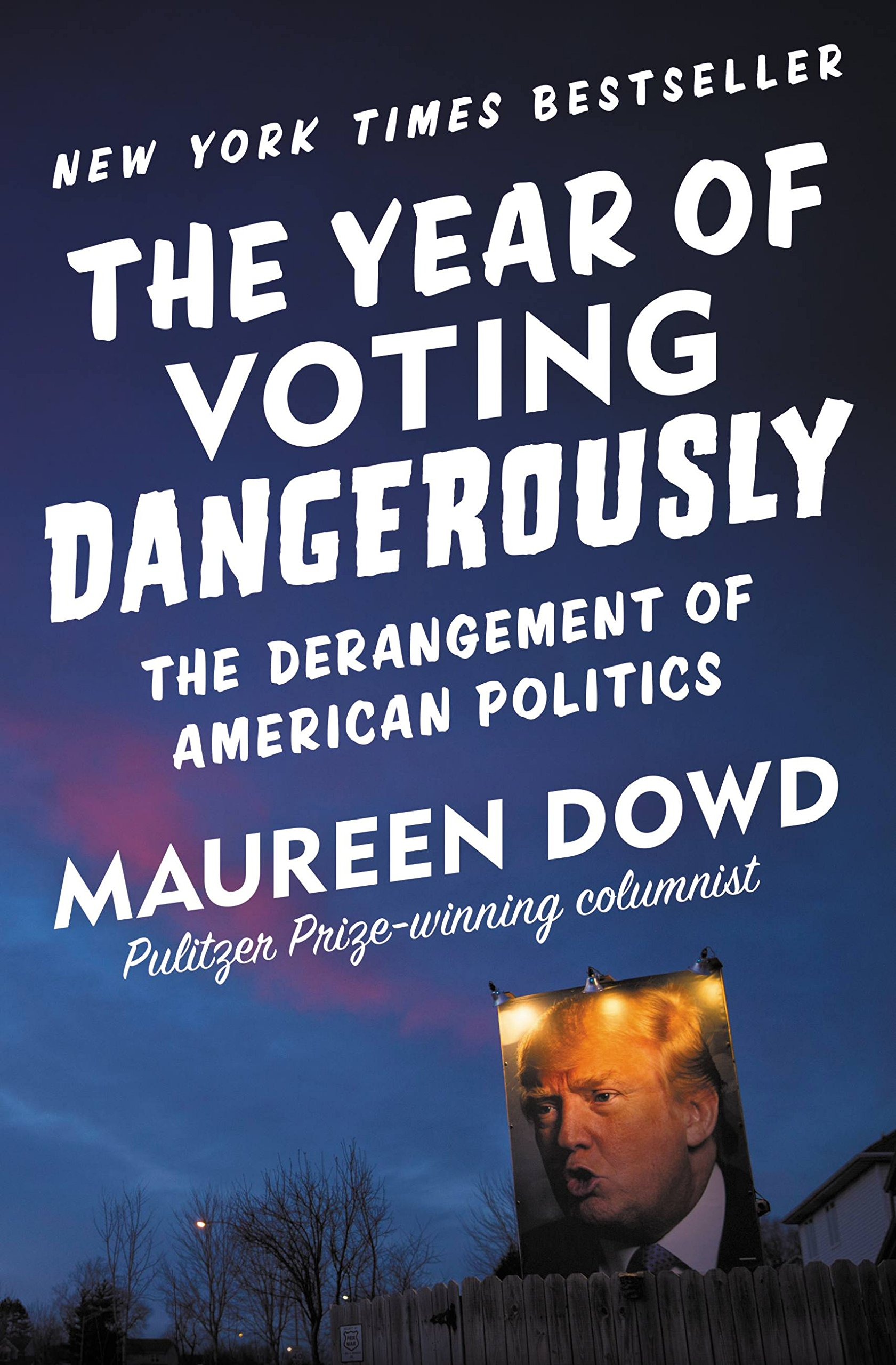 Image OfThe Year Of Voting Dangerously: The Derangement Of American Politics (English Edition)