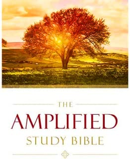 Best the amplified bible app Reviews