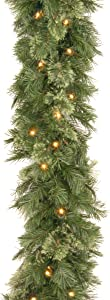 National Tree 9 Foot by 10 Inch Wispy Willow Garland with 50 Clear Lights (WO1-9ALO-1)