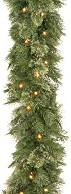 National Tree Company Pre-lit Artificial Christmas Garland | Includes Pre-strung Lights | Wispy Willow - 9 ft