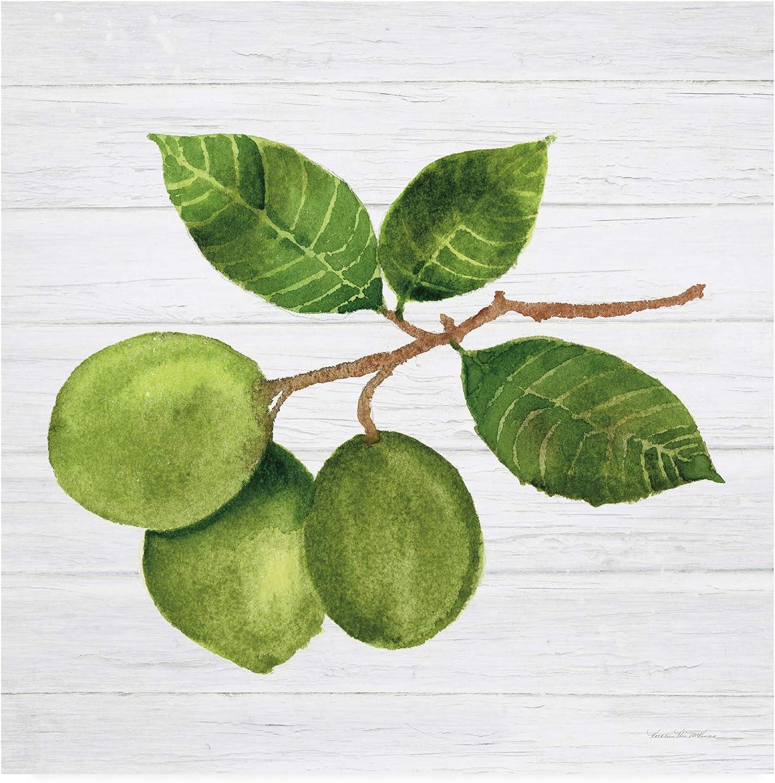 Trademark Fine Art Citrus Garden II Shiplap