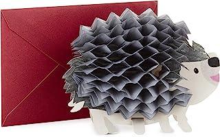 Best Hallmark Pop Up Birthday Card (3D Honeycomb Hedgehog) Review