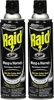 wasp insecticide spray
