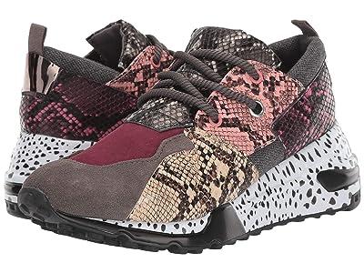 Steve Madden Cliff Sneaker (Pink Multi Snake) Women