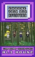 Choose Your Own Adventurer - Campaign 1: Origin Story
