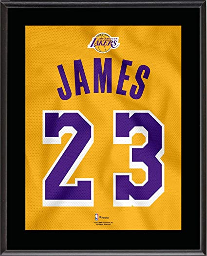 LeBron James Los Angeles Lakers 10.5