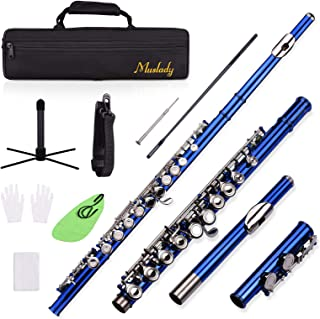 Closed Hole C Flute 16 Keys Cupronickel Nickel-plated Wind Instrument with Carry Case Flute Stand Gloves Cleaning Cloth Mi...