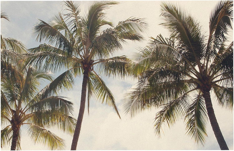 KESS InHouse Catherine Mcdonald Boho Palms  Coastal Trees Dog Place Mat, 13  x 18