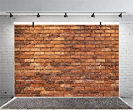 Leyiyi Vintage Red Brick Wall 8x6ft Photography Background Grunge Rustic Wall Graffiti Birthday Party Old Dirty Street Baby Shower Countryside Style Portraits kids adults Studio Props