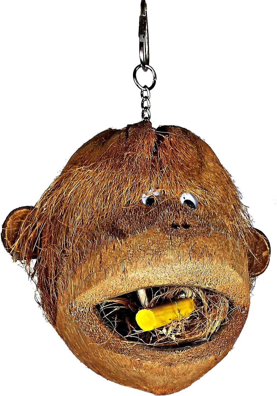 Coco Head Bird Foraging Toys (Monkey Coco Head)