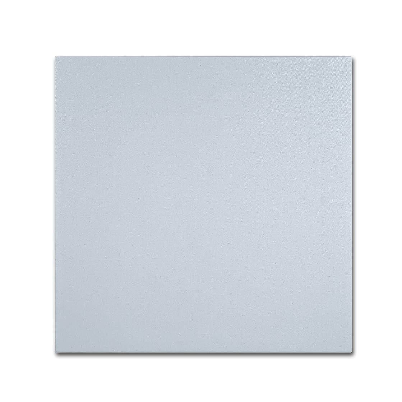 Trademark Fine Art Professional Blank Canvas on Stretcher Bars, 18