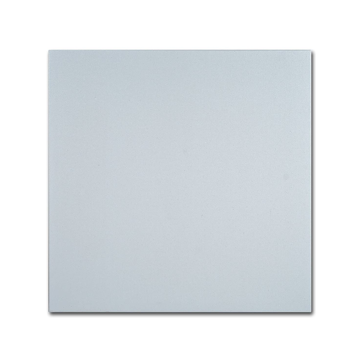 Trademark Fine Art Professional Blank Canvas on Stretcher Bars, 24