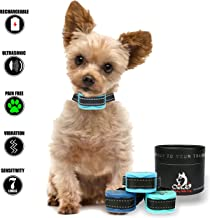 Our K9 Training Made Easy Best Bark Collar for Small Dogs Pain Free Ultrasonic and Vibration Sapphire
