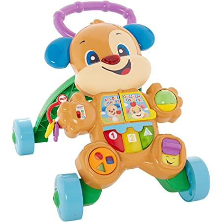 Fisher-Price Cagnolino Primi Passi Spingibile, Giocattolo Elettronico Educativo con Musica e Suoni, per Bambini di 6 + Mesi, FRC84