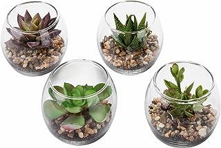 Set of 4 Decorative Mini Modern Design Clear Round Artificial Succulent Plant Glass Display Vases (Assortment 1)