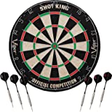 Top 10 Best Dartboards of 2020