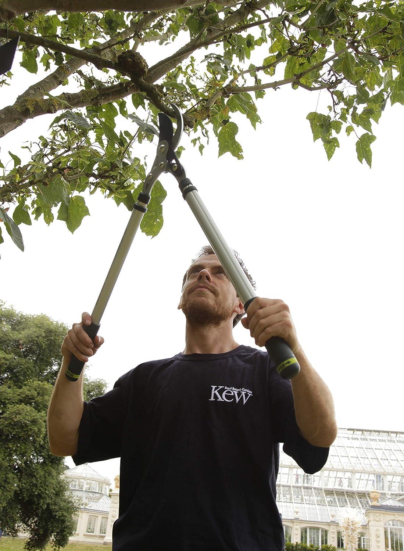 Silver Spear /& Jackson 8081KEW Kew Gardens Dual Compound Telescopic Anvil Loppers