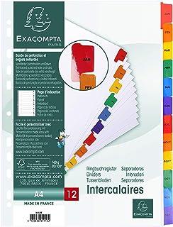 EXACOMPTA 1113E Intercalaires Imprimés mensuels carte blanche 160g - 12 positions - A4 Blanc